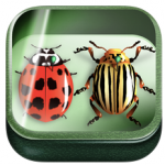 wpid-Bugs-in-the-Garden1-150x150.png